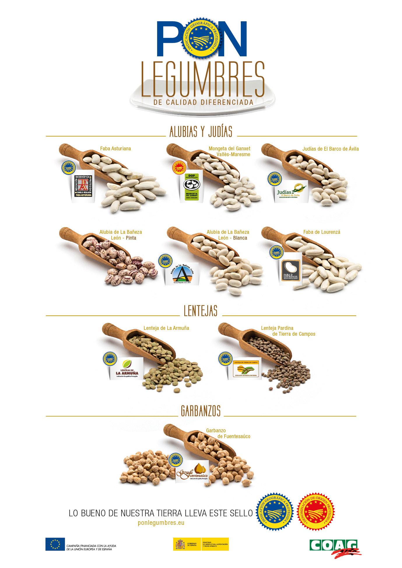 cartel-variedades-legumbres