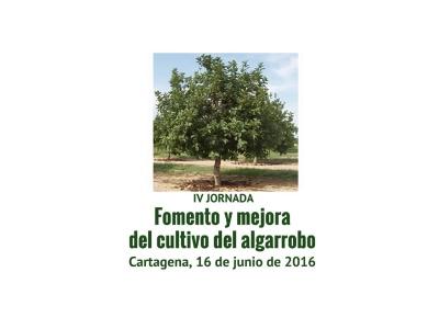 Algarrobo2016