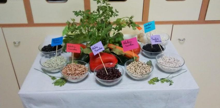 La AEL divulga la importancia de las legumbres y otras leguminosas en colegios