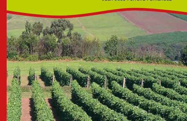 El SERIDA publica 'Orientaciones sobre el cultivo de la faba'