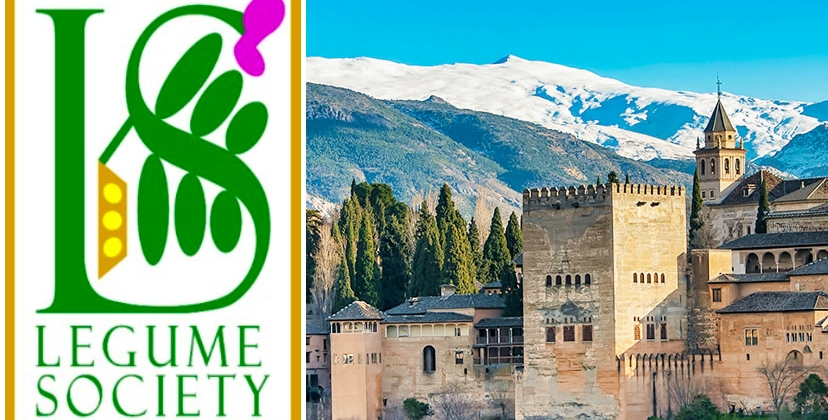 4th International Legume Society Conference (18th and 21st of October 2022)