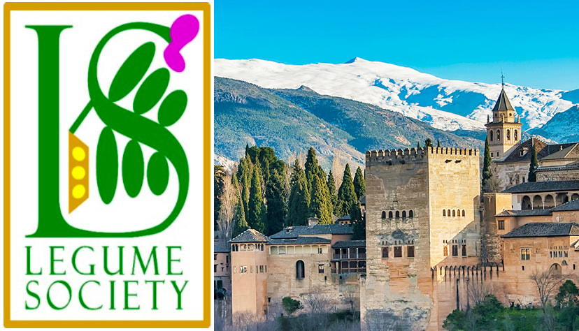 4th International Legume Society Conference, which will be held between the 18th and 21st of October 2022